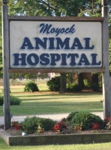 Moyock Animal Hospital Sign